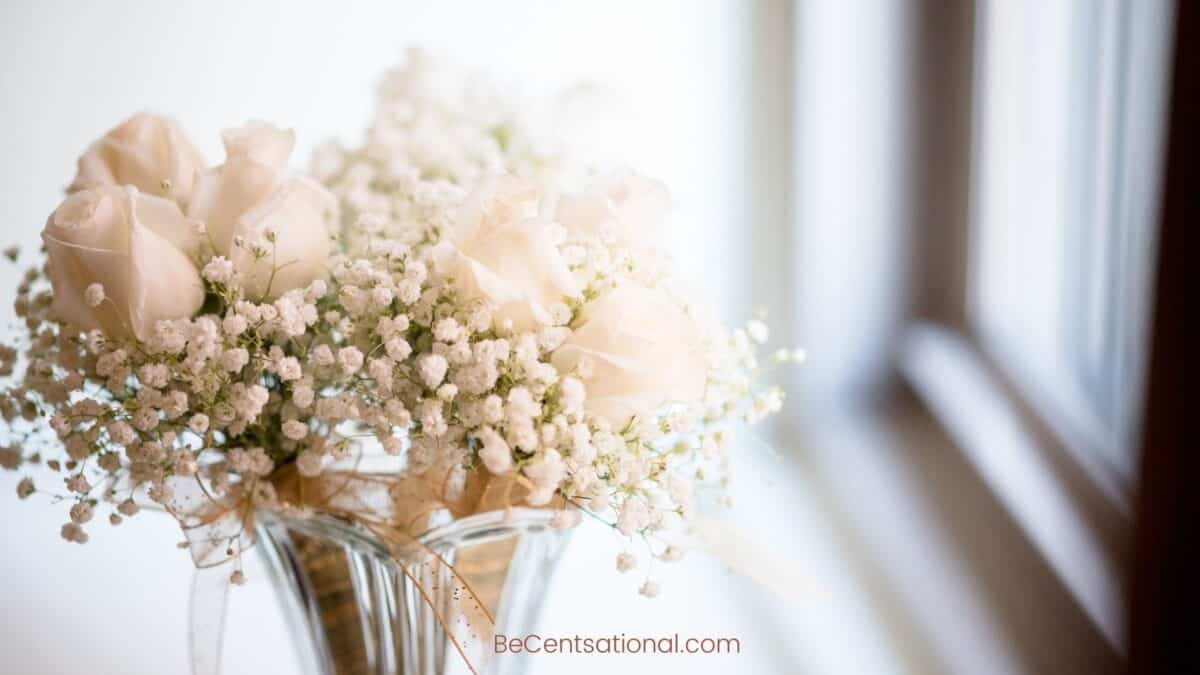 cream Flower Wallpapers Wallpapers, flower Backgrounds for desktop