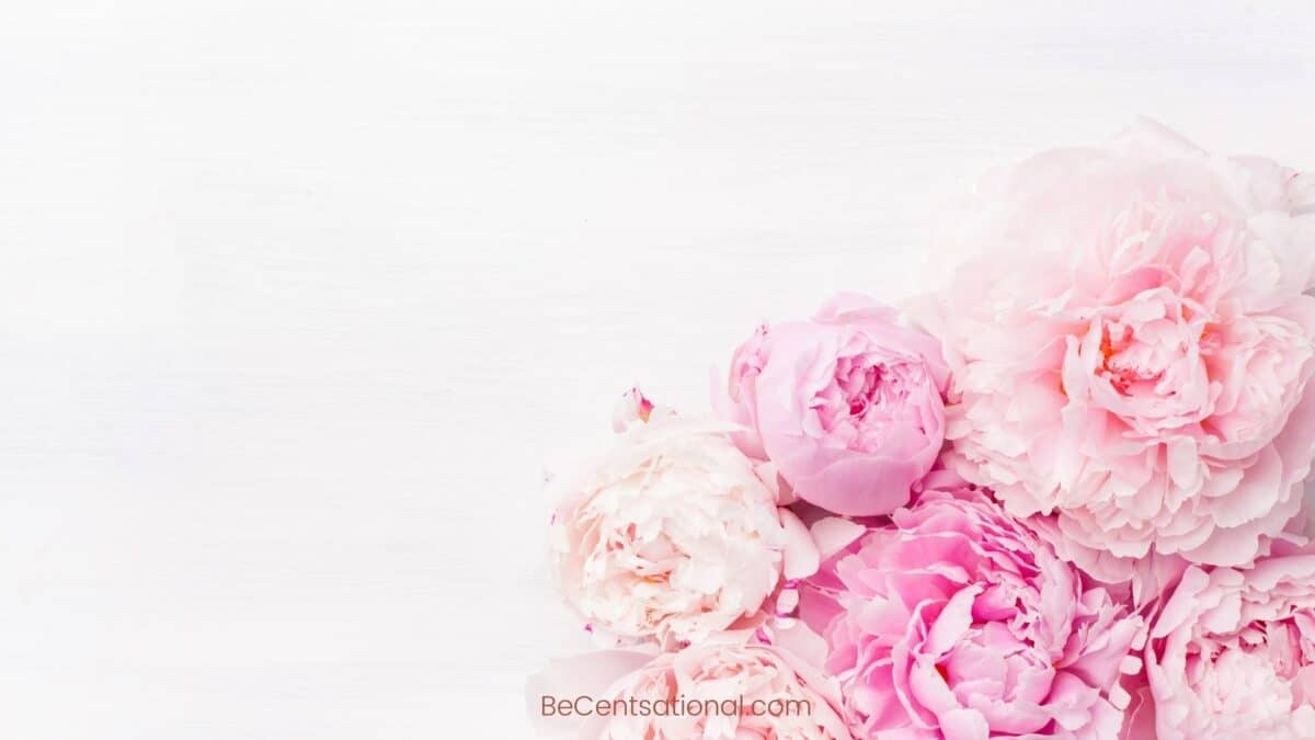 Flower Wallpapers 4k Free Wallpapers & Backgrounds