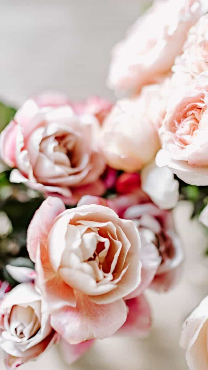 romantic flowers background for iPhone