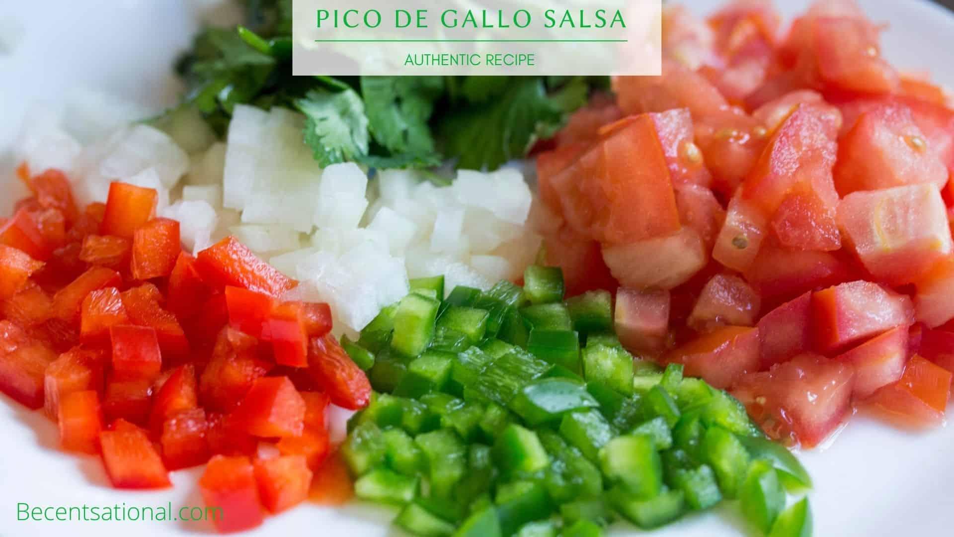Pico de gallo salsa chopped ingredients