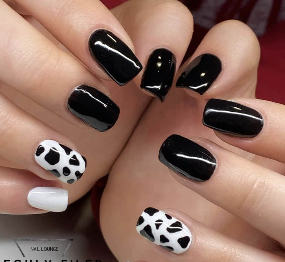 Black and white nail design with one cow nail print accent